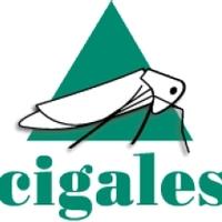 Thumb logo cigales