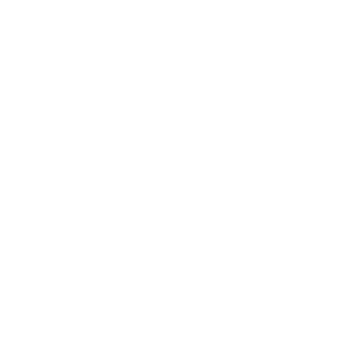 500x500 logo blanc label emmaus